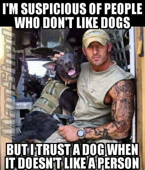 Dog I don't trust people who don't like dogs -but-.jpg